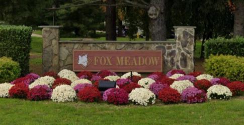 Fox Meadows