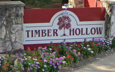 Timber Hollow